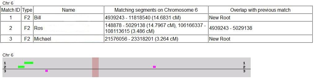 Chromosome #6