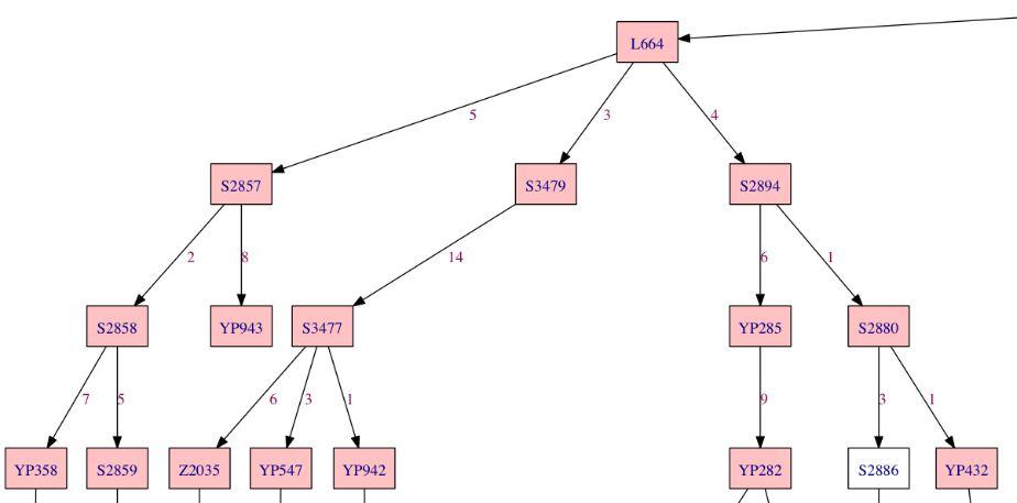L664 Structure