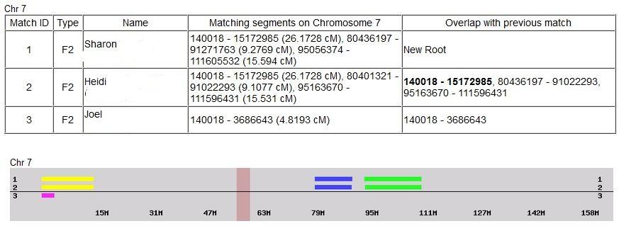 Patricia Chromosome 7