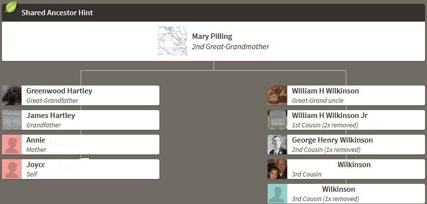 Joyce's Hartley DNA – Hartley DNA & Genealogy