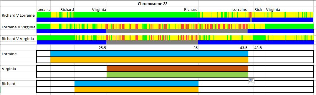 Visual Phasing: My Father in Law's Chromosome 22 – Hartley DNA & Genealogy