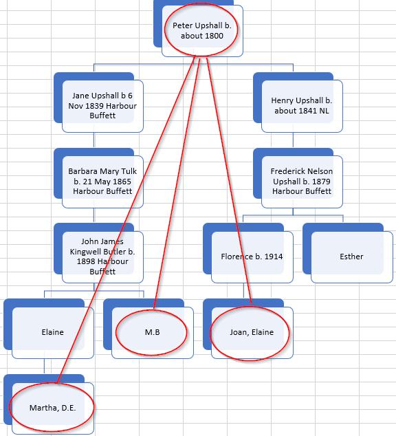 Martha's Family's Harbour Buffett DNA – Hartley DNA & Genealogy